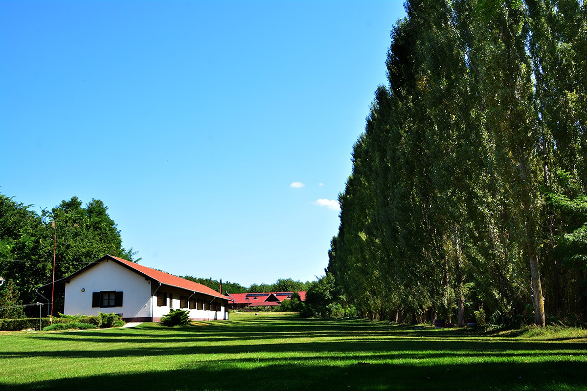 Esküvőhelyszín - Rendezvény helyszín Sipito pihenőpark
